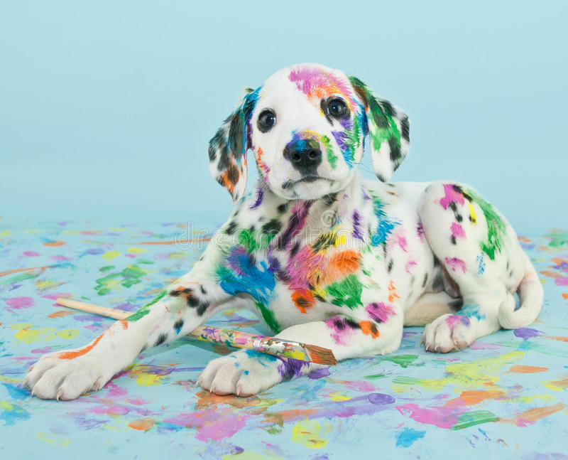 Geschilderd Puppy stock fotografie