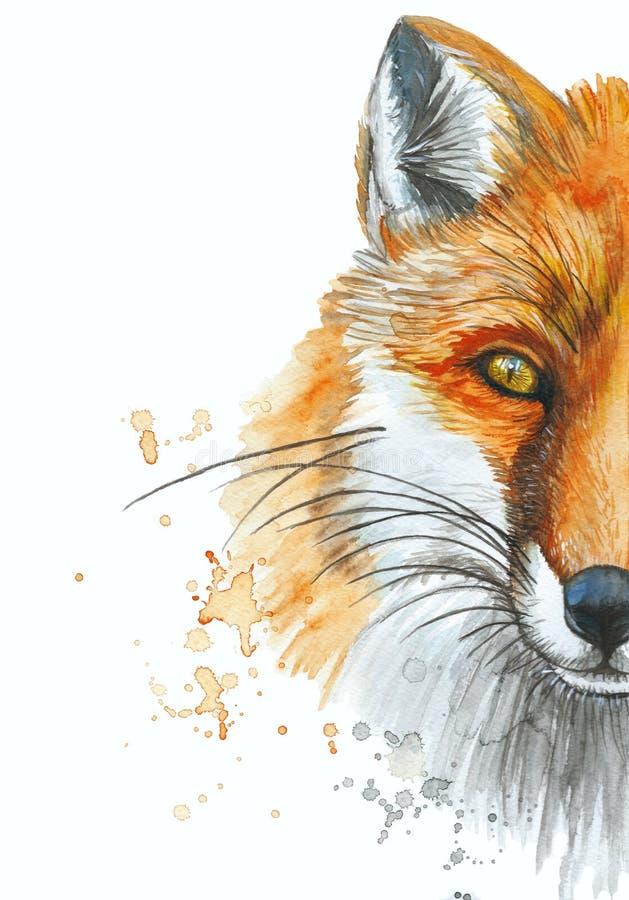 Geschilderd waterverf het schilderen kunstportret van een rode vos stock illustratie