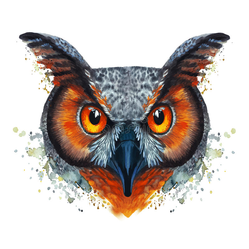 Geschilderd waterverfbeeld van een verhongerde nachtuilvogel op een witte achtergrond met rode oranje ogen met heldere kleuren vector illustratie