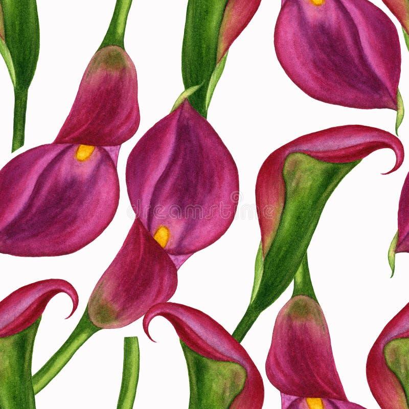 Geschilderde de hand van de Watercolourillustratie Het naadloze patroon met de lente bloeit magnolia's, calla lelies, anemonen en stock illustratie