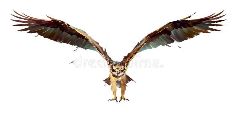 Geschilderde vogelvisarend tijdens de vlucht op een witte achtergrond royalty-vrije illustratie