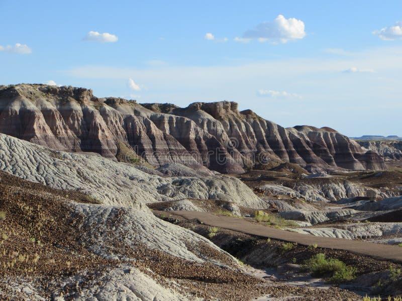 Geschilderde Woestijn Arizona stock afbeelding