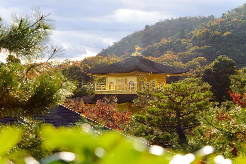 geschlossen herauf goldenen Pavillon mit autunm Jahreszeithintergrund, Kinkaku stockbild