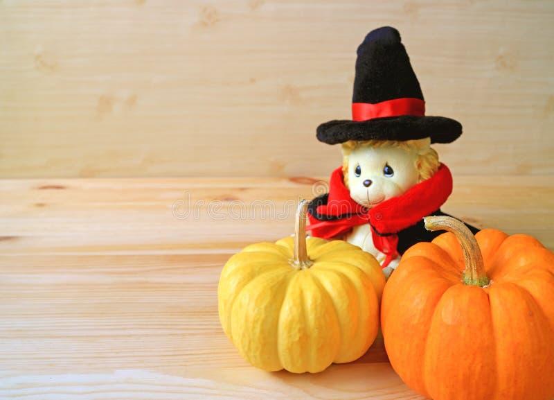 Geschlossen herauf vibrierende orange Farbe und gelben reifen Kürbis mit entzückendem Lion Soft Toy im Zauberer-Kostüm auf hölzer stockbild