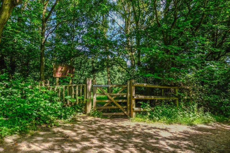 Geschlossenes hölzernes Tor auf einem Waldweg stockfotos