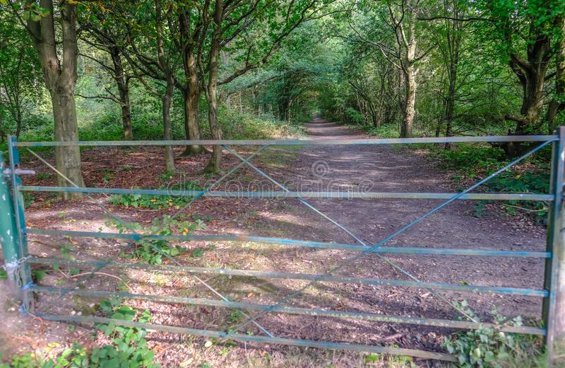 Geschlossenes Metalltor, das den Eingang zu einem Waldweg in blockiert lizenzfreies stockbild