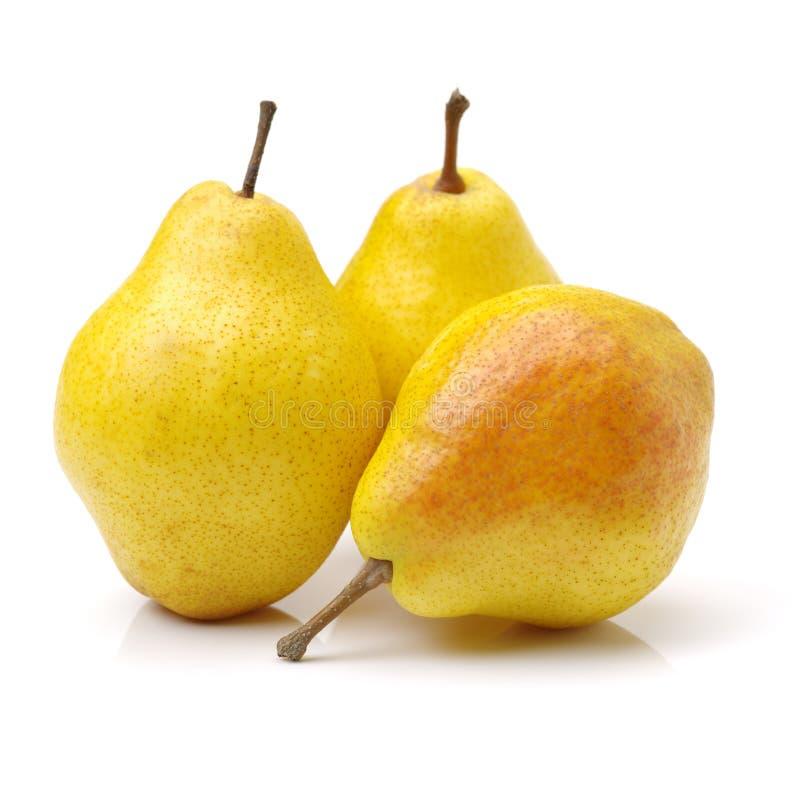 Geschmackvolle Birne lizenzfreie stockbilder