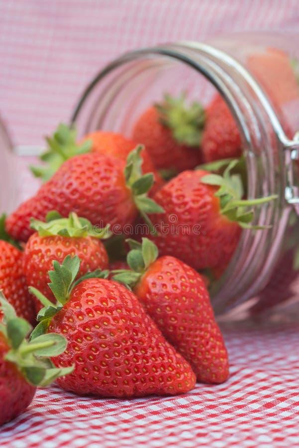 Geschmackvolle frische Erdbeeren im Glasspeicherglas stockbild