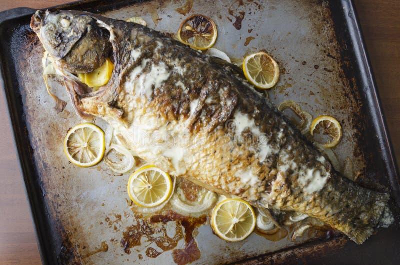 Geschmackvolle gegrillte Karpfenfische mit Scheiben der Zitrone, Sahne auf die Oberseite, gedient auf Küchenbehälter Beschneidung stockbilder