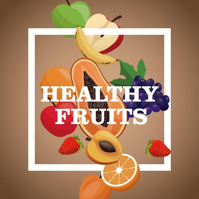 geschmackvolle Mahlzeit der gesunden Früchte des Plakats stock abbildung