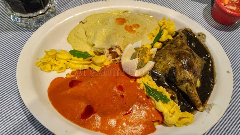 Geschmackvolle mexikanische Nahrung in Yucatan, Mérida lizenzfreie stockbilder