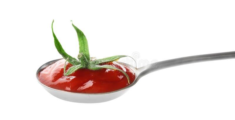 Geschmackvolle selbst gemachte Tomatensauce und Kelch im Löffel stockfoto