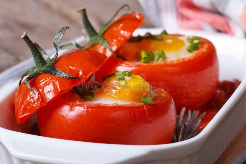 Geschmackvoller Aperitif von den gebackenen Tomaten angefüllt mit Eiern lizenzfreies stockbild