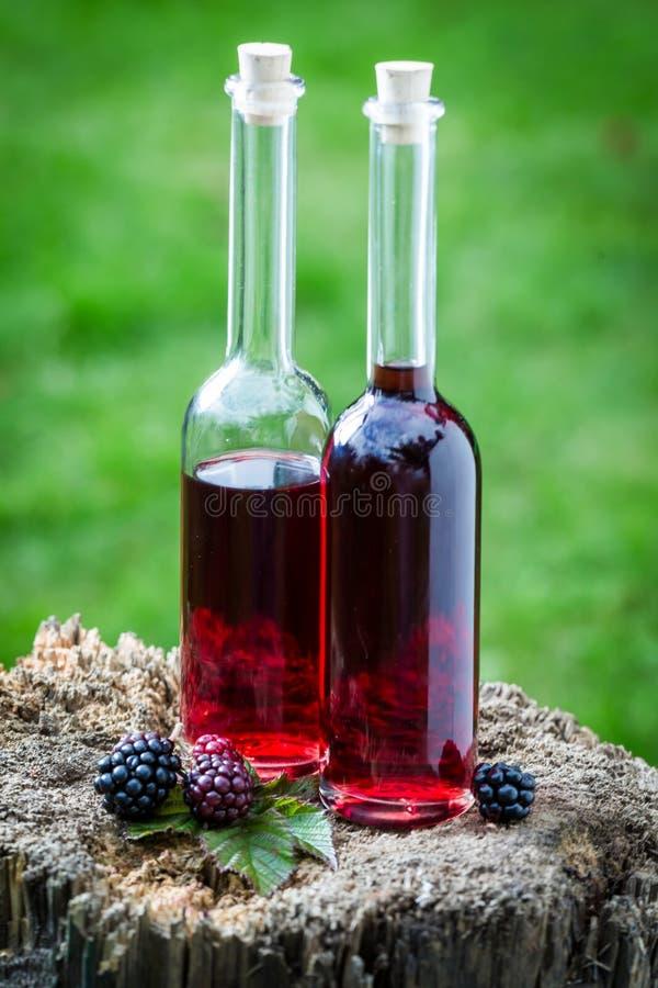 Geschmackvoller Likör gemacht vom Alkohol und von den Brombeeren im Sommer lizenzfreie stockfotografie