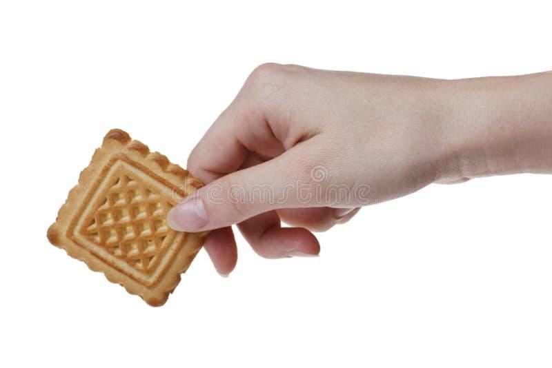 Geschmackvolles Plätzchen in der Hand der Frau stockfotografie