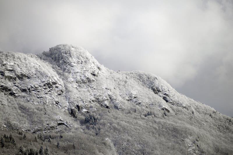 Geschneite Berge und graue Himmellandschaft stockfotografie
