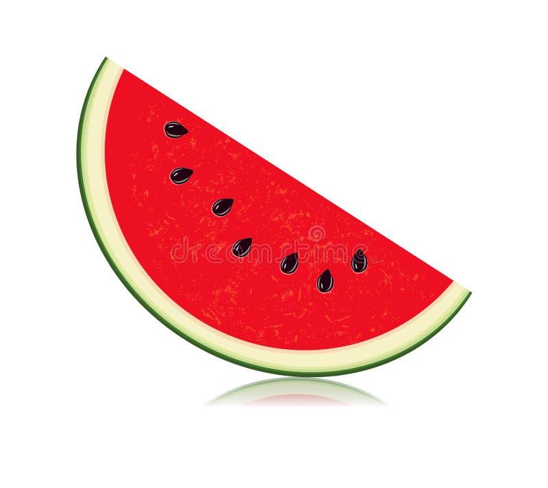Geschnitten von der Wassermelone lokalisiert auf weißem Hintergrund lizenzfreie abbildung