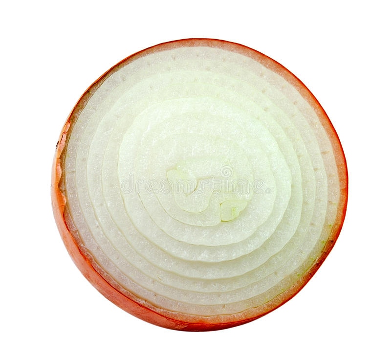 Geschnittene Zwiebel auf weißem Hintergrund lizenzfreie stockfotografie
