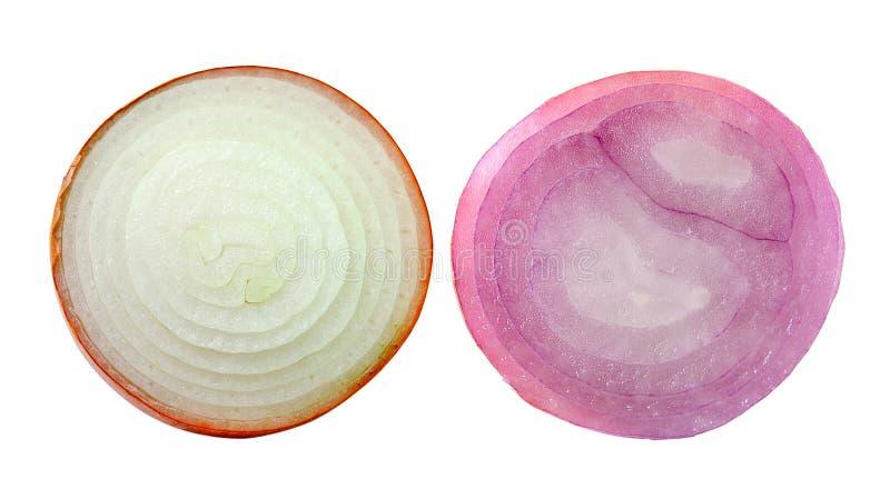 Geschnittene Zwiebel auf weißem Hintergrund lizenzfreie stockbilder