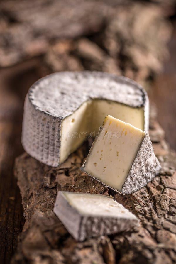 Geschnittener Camembertkäse lizenzfreies stockfoto
