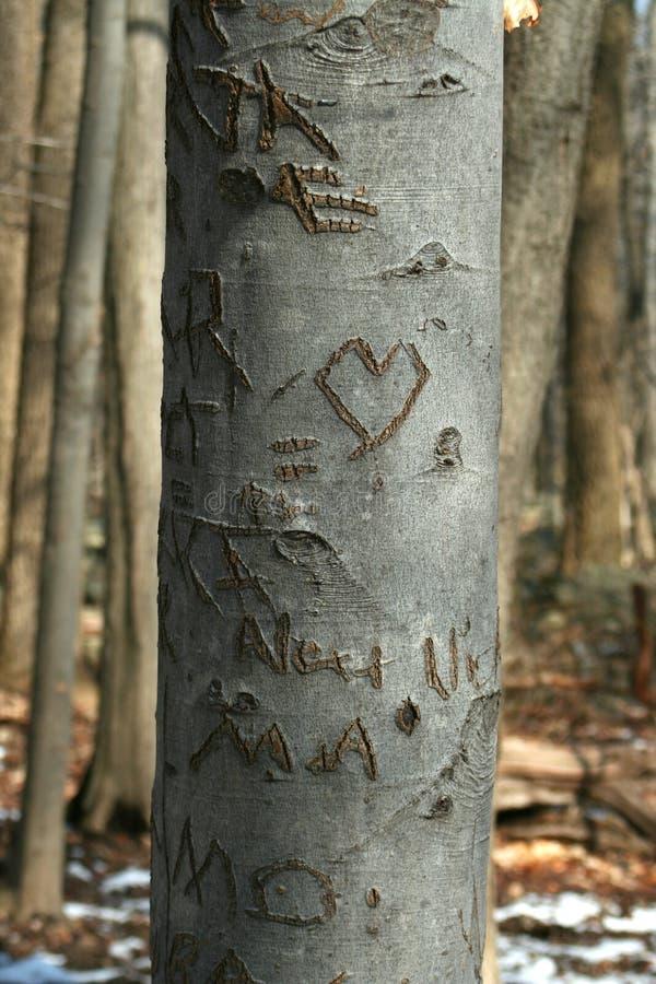 Geschnitzter Schatzbaum im Holz lizenzfreie stockfotografie