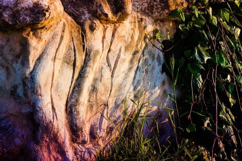 Geschnitzter Stein mit Vegetation stockbilder