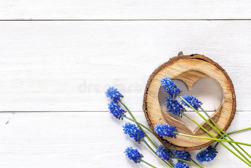 Geschnitztes hölzernes Herz mit blauen muscaries blüht auf weißem hölzernem stockbilder