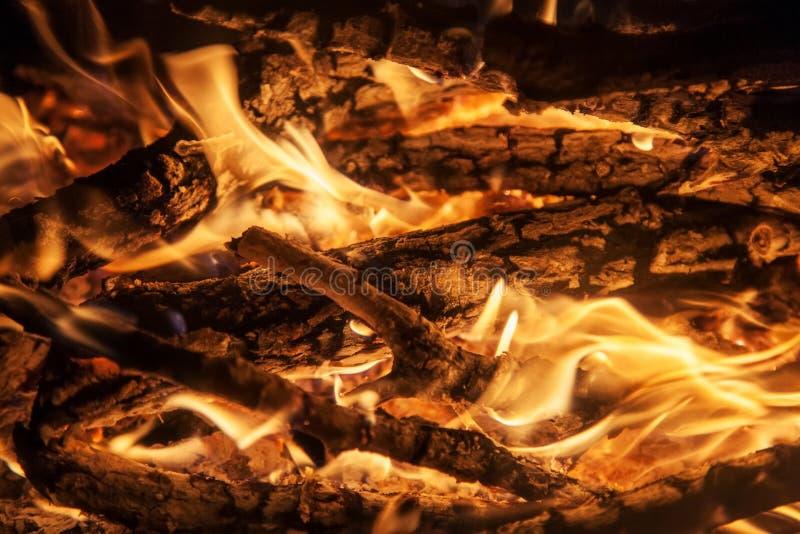 Geschoten van het branden van brandhout in open haard stock fotografie