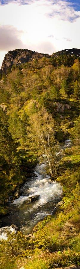 Geschud Bergstroom door het Bos en de Berg royalty-vrije stock foto's