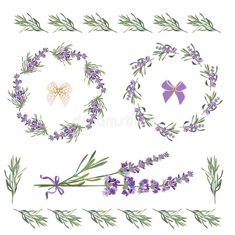 Gesetzte festliche Rahmen und Elemente mit Lavendelblumen für Grußkarte Botanische Illustration stock abbildung