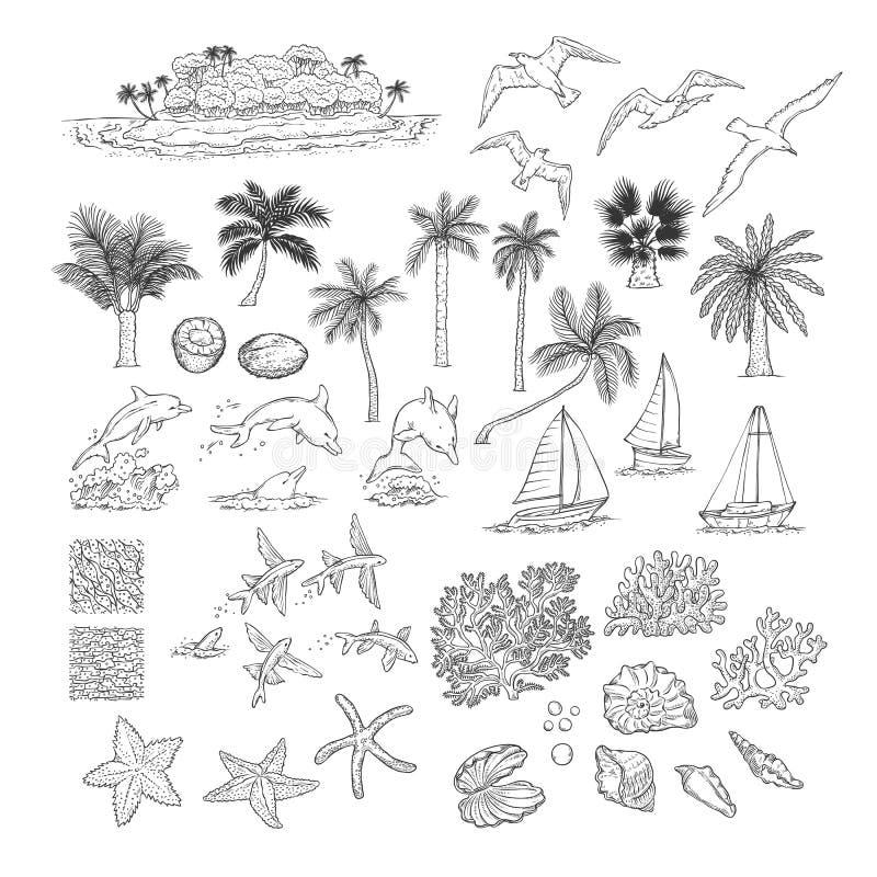 Gesetzte tropische Anlagen des Sommervektors und Wassertiere Insel mit Palme unter Ozean, verschiedene Delphinseemöwen fischen un lizenzfreie abbildung