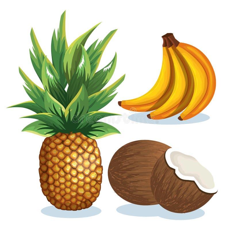 Gesetzte tropische frische Früchte vektor abbildung