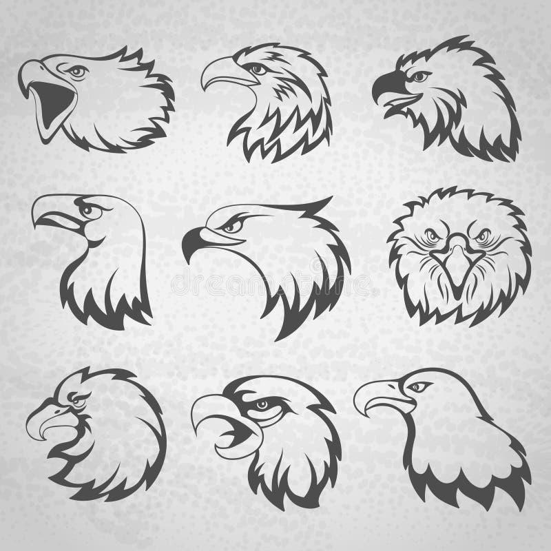 Gesetzte Vektorillustration des Falke-, Falke- oder Adlerhauptmaskottchens auf weißem Hintergrund lizenzfreie abbildung