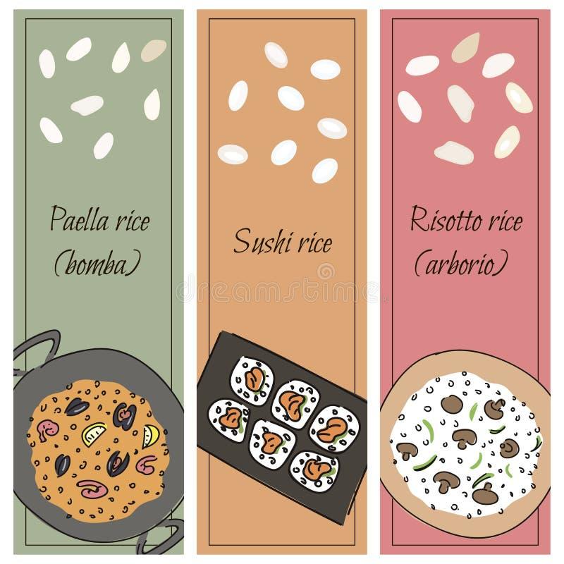 Gesetzter Reis für verschiedene Teller vektor abbildung