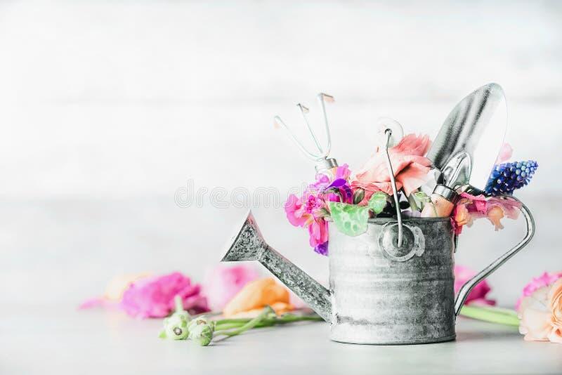 Gesetztes Stillleben des Gartens mit Gießkanne, Gartenarbeitwerkzeugen und Blumen auf weißer Tabelle lizenzfreies stockfoto