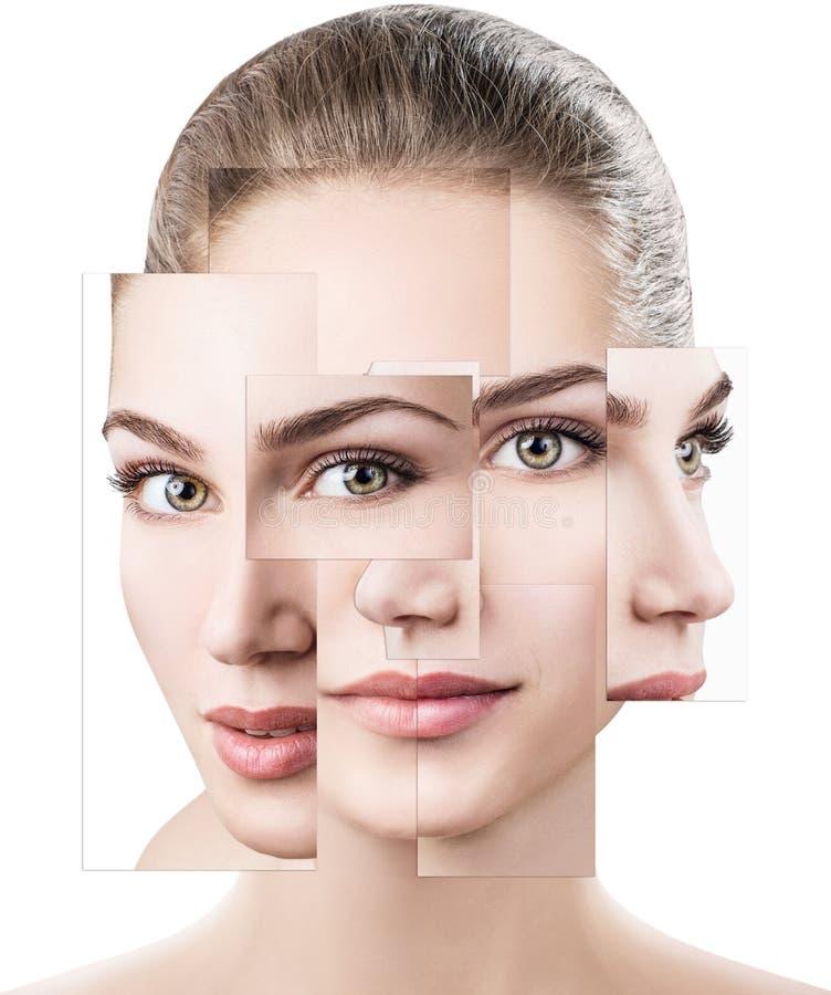 Gesicht der schönen Frau Bild von verschiedenen Teilen Fällige Frau über Weiß lizenzfreies stockbild