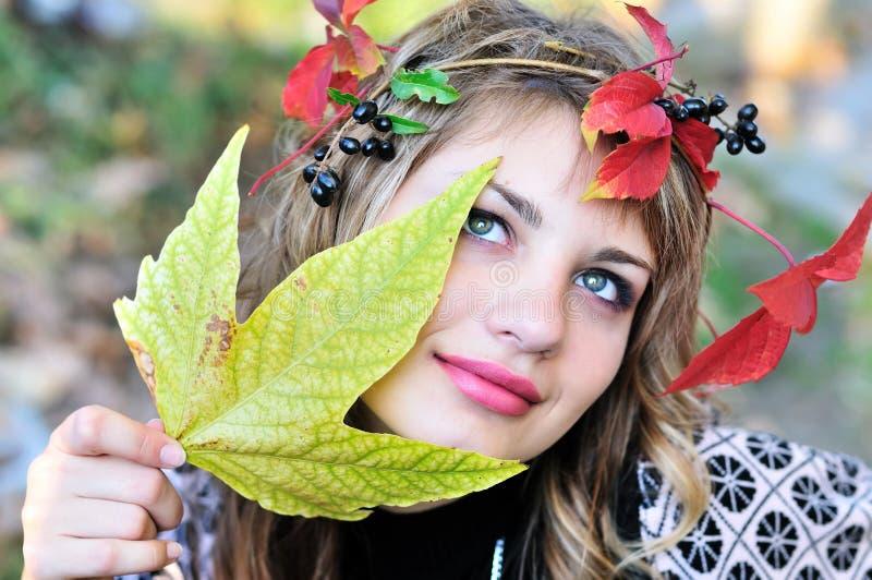 Gesicht des Herbstes lizenzfreie stockfotografie