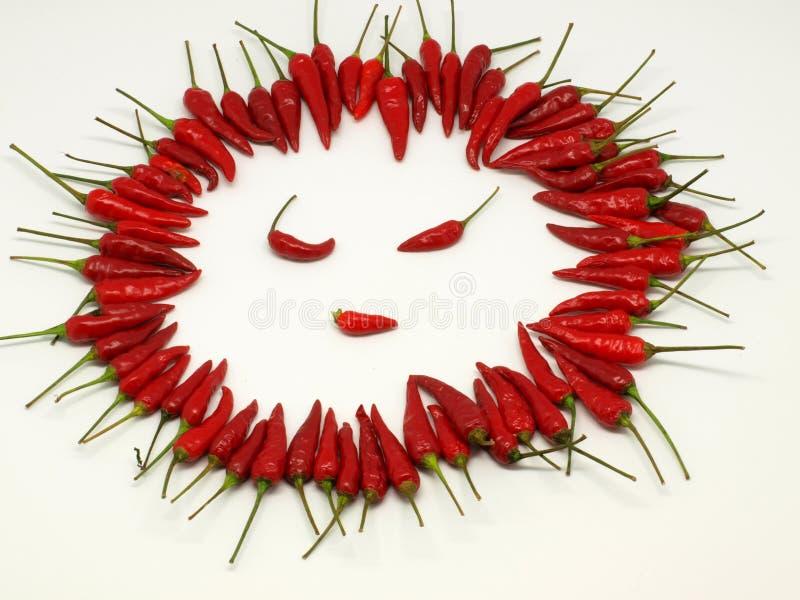 Gesicht des roten Pfeffers lizenzfreie stockfotografie