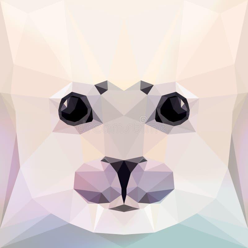 Gesicht eines Seehundbabys stock abbildung