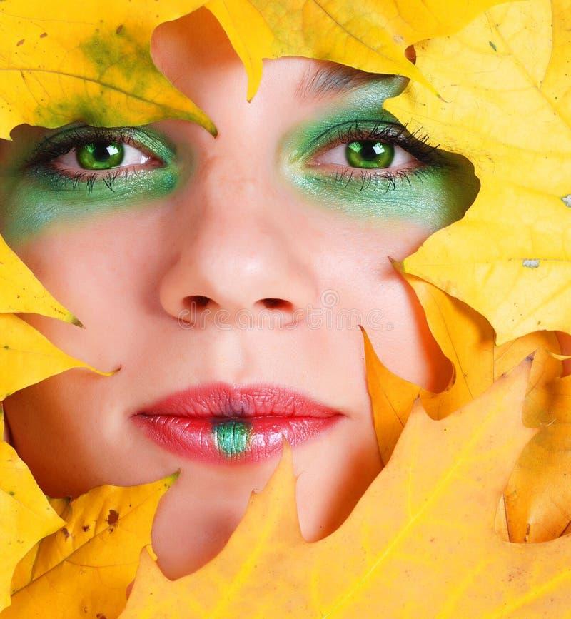 Gesicht mit Ahornblatt lizenzfreies stockfoto