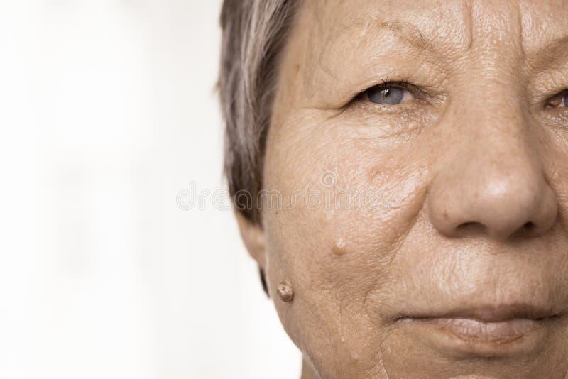 Gesichts-Portr?tnahaufnahme des ?lteren Pension?rs weibliche halbe stockfotos