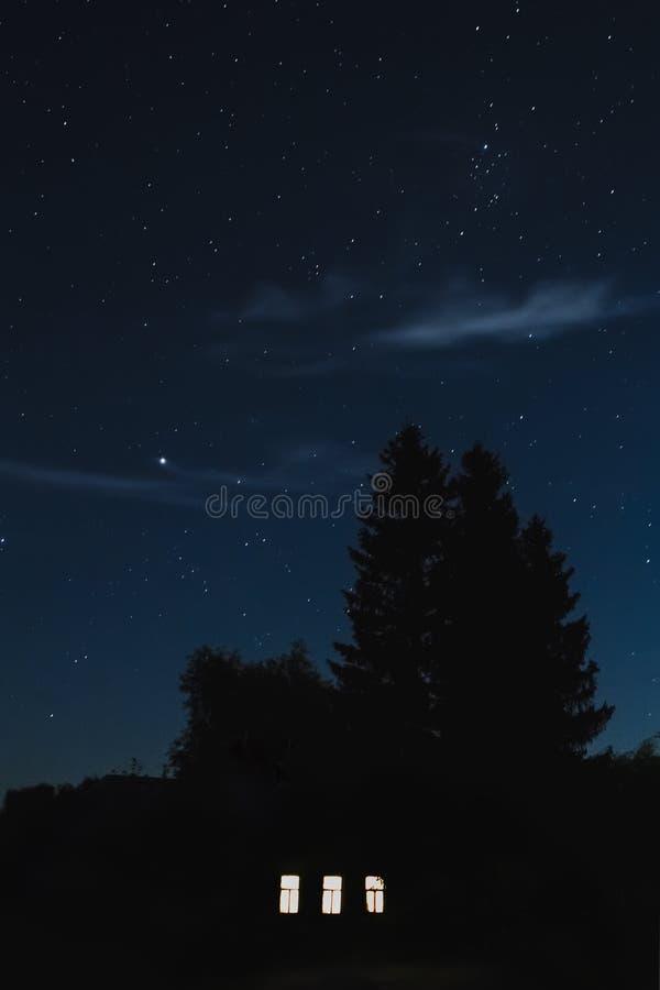 Gesilhouetteerde boom tegen de achtergrond van de nachthemel royalty-vrije stock afbeelding