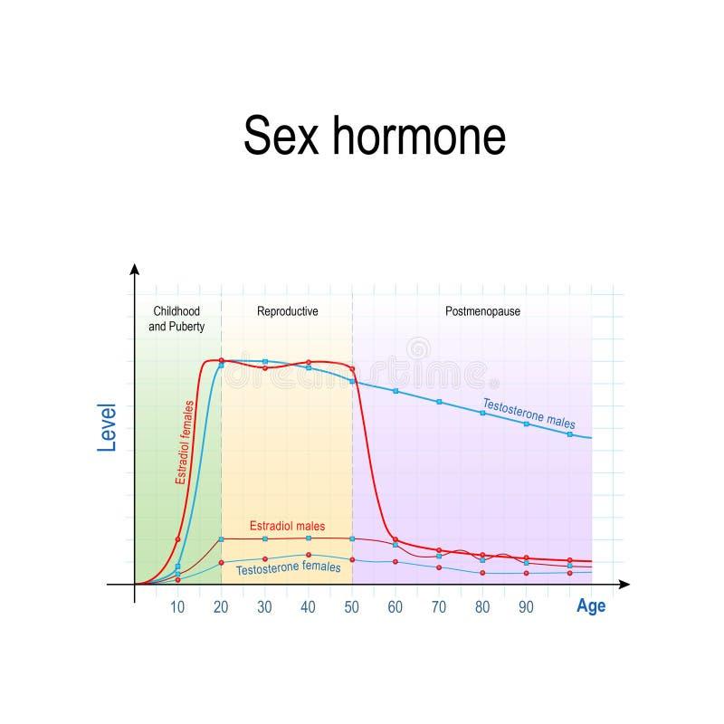 Geslacht hormonen en het verouderen Niveaus van Testosteron voor mannetjes en wijfjes, en Estradiol voor mannen en vrouwen stock illustratie