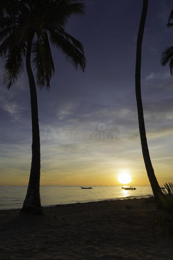 Gesloten kleurenparaplu's in het strand stock fotografie