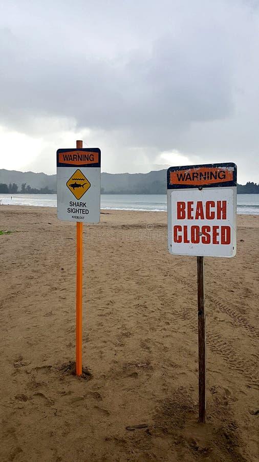 Gesloten strand wegens Haai het Waarnemen Tekens stock fotografie