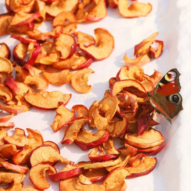 Gesneden droge appelen drying Droge appelachtergrond Vlinder bij het drogen royalty-vrije stock foto's
