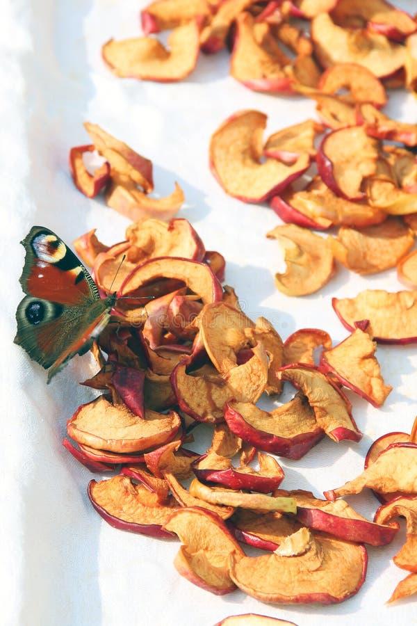 Gesneden droge appelen drying Droge appelachtergrond Vlinder bij het drogen stock afbeelding