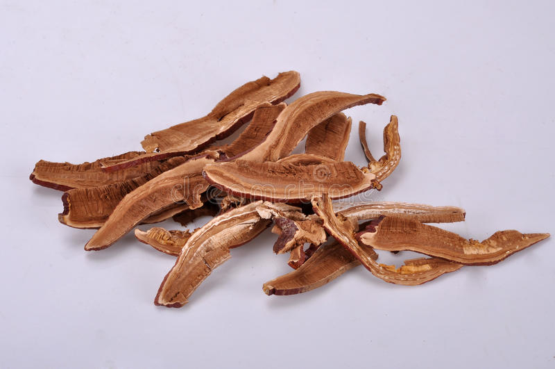 Gesneden Ganoderma--een traditionele Chinese geneeskunde stock fotografie