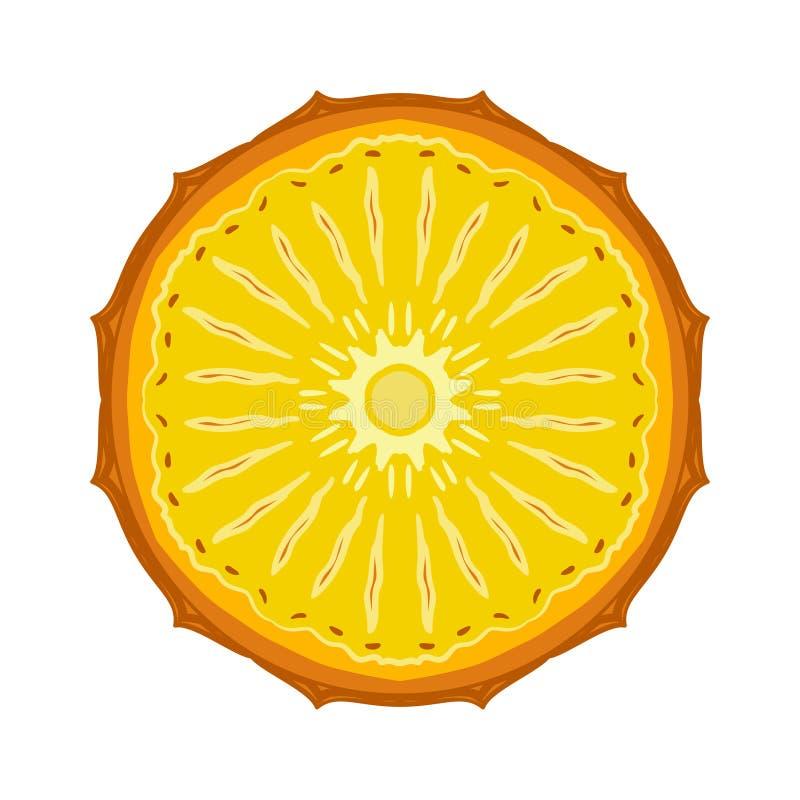Gesneden gekleurde het fruitananas van de schetsstijl royalty-vrije illustratie