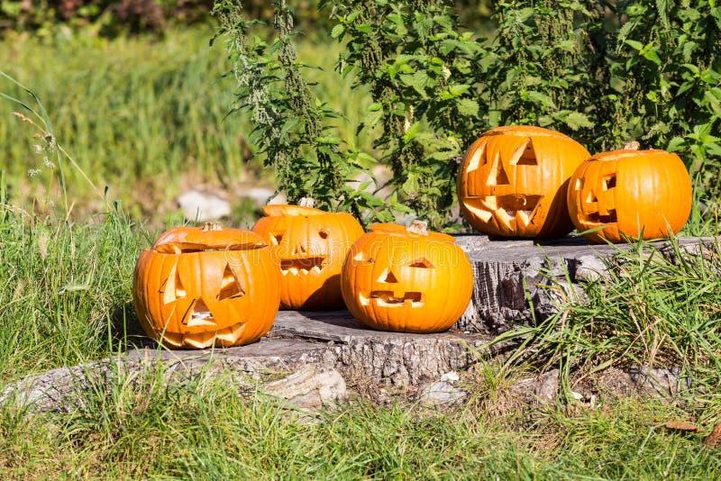 Gesneden Halloween pompoen stock afbeeldingen